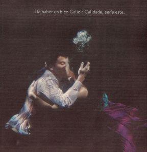 2008-11-05- El País- Galicia Calidade 1